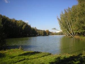 Тропаревский лесопарк